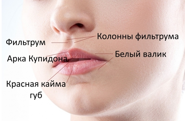 7 рад, щоб отримати шикарні губи